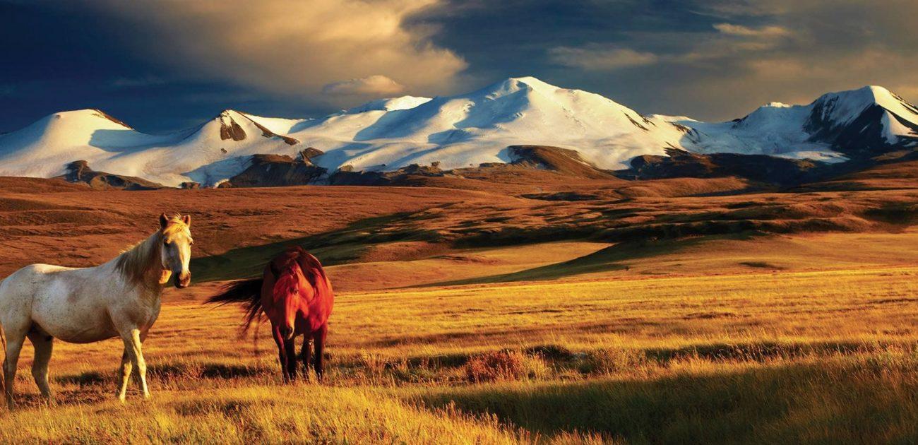 Motosiklet ile Pamir ve Moğolistan 4